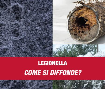 Legionella - diffusione